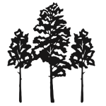 cropped-Aspen-Trees-Logo.png