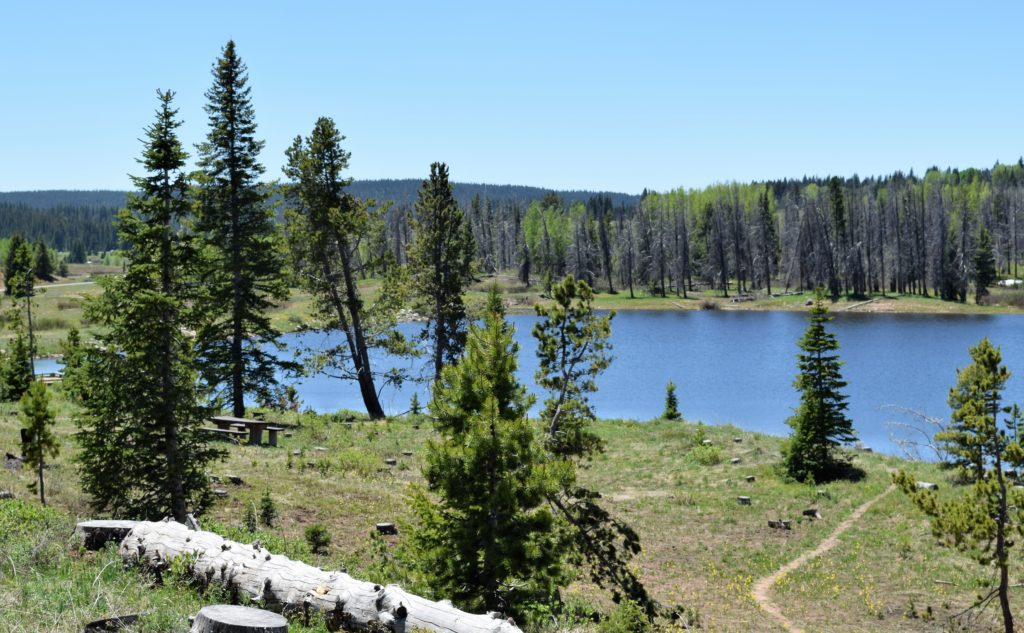 view of Dumont Lake