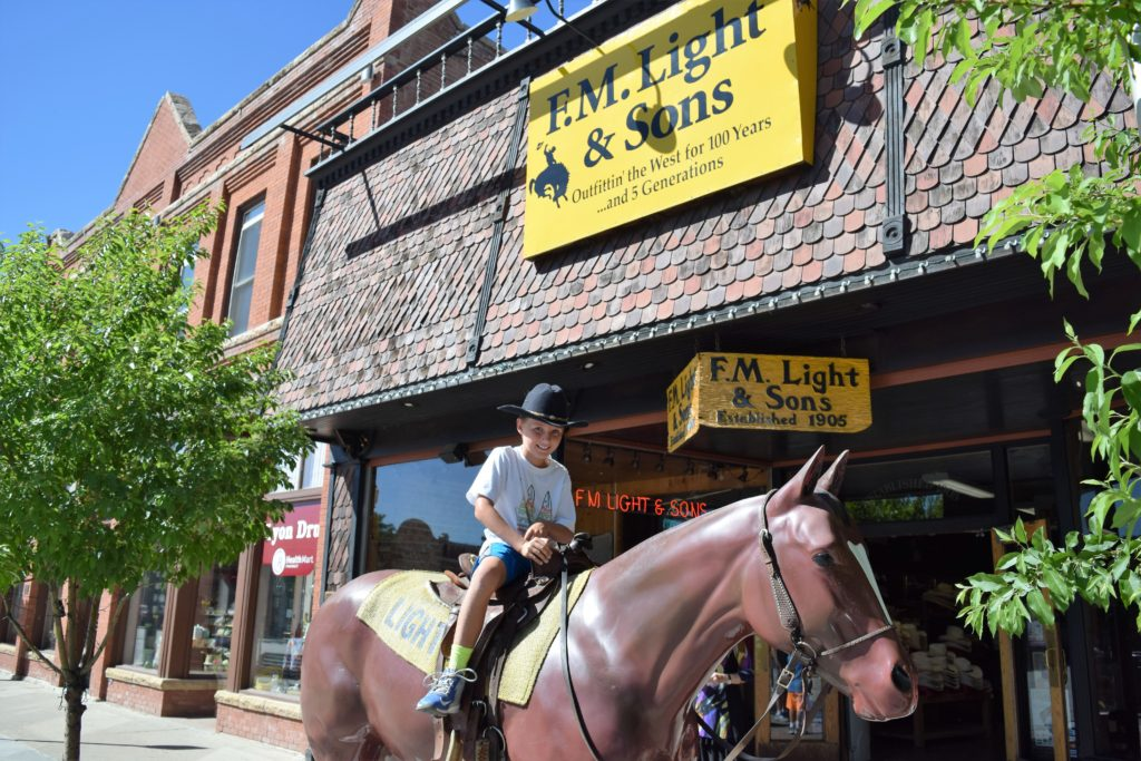 F.M. Light & Sons -Horse out front